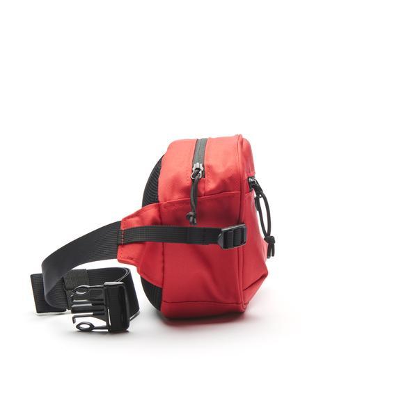 polar hip bag.jpg